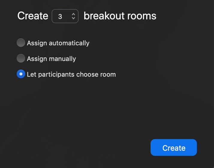 Zoom Breakout Room Options