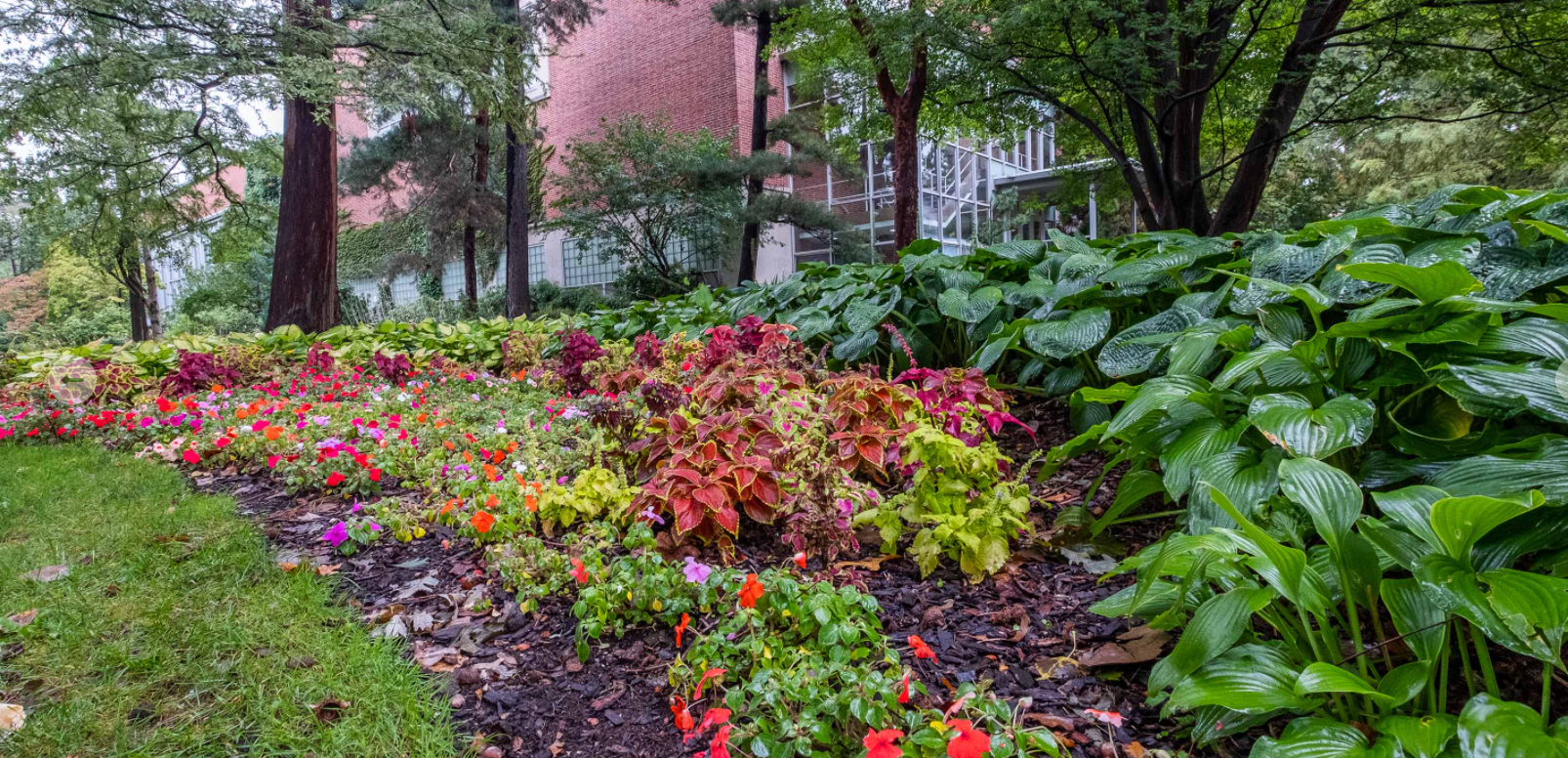 Seen on Campus – Fall MSU Today Version